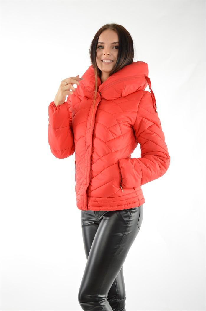 Куртка F5Женская одежда<br>Уход за изделием: стирка при 30°C<br> Состав: 100% нейлон; подкладка: 100% полиэстер; наполнитель: 100% полиэстер<br> <br> Цвет: красный<br> Сезон: весна/осень<br> <br> Страна дизайна: Италия<br><br>Материал: Нейлон<br>Сезон: ВЕСНА/ОСЕНЬ<br>Коллекция: Осень-зима<br>Пол: Женский<br>Возраст: Взрослый<br>Цвет: Красный<br>Размер INT: S